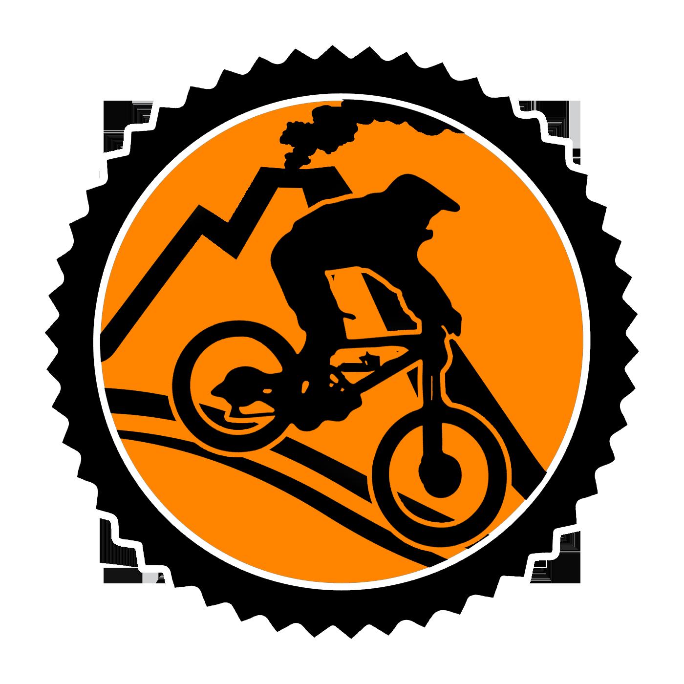 Logo MTB Workshop Official